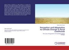 Copertina di Perception and Adaptation to Climate Change in Rural Livelihoods