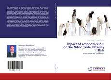 Bookcover of Impact of Amphotericin-B on the Nitric Oxide Pathway in Rats