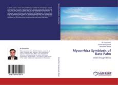 Обложка Mycorrhiza Symbiosis of Date Palm