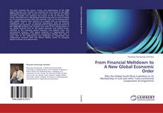 From  Financial Meltdown to A New Global Economic Order的封面