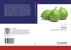 Bookcover of Guava
