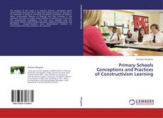 Capa do livro de Primary Schools Conceptions and Practices of Constructivism Learning