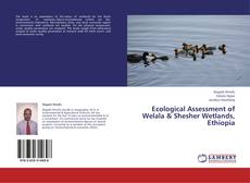 Copertina di Ecological Assessment of Welala & Shesher Wetlands, Ethiopia