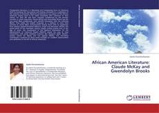 Borítókép a  African American Literature: Claude McKay and Gwendolyn Brooks - hoz