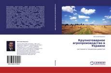 Bookcover of Крупнотоварное агропроизводство в Украине