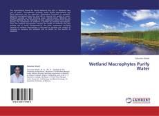 Wetland Macrophytes Purify Water的封面