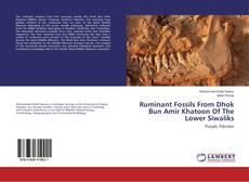 Ruminant Fossils From Dhok Bun Amir Khatoon Of The Lower Siwaliks的封面