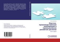 Научно-производственная кооперация в промышленно развитом регионе kitap kapağı