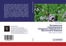 Булавоусые чешуекрылые Северного Прикаспия и Восточного Кавказа的封面