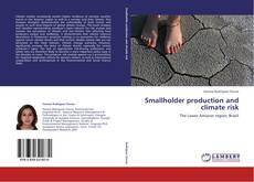 Copertina di Smallholder production and climate risk