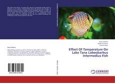 Capa do livro de Effect Of Temperature On Lake Tana Labeobarbus Intermedius Fish