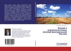 Buchcover von Калий в агроэкосистемах ополий Центральной России