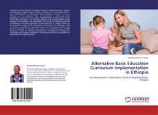 Bookcover of Alternative Basic Education Curriculum Implementation in Ethiopia