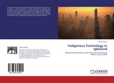 Capa do livro de Indigenous Technology in Igboland