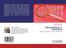 Малый бизнес в Беларуси kitap kapağı