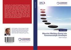 Maurice Merleau-Ponty'nin Fenomenolojik Ontolojisi kitap kapağı
