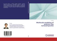 Buchcover von Multiscale modeling of polymer-clay nanocomposites