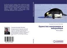 Bookcover of Единство макромира и микромира