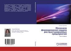 Bookcover of Механизм формирования кадров реструктурируемых предприятий