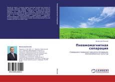Bookcover of Пневмомагнитная сепарация