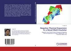 Borítókép a  Negative Thermal Expansion in a Novel Mott Insulator - hoz