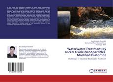 Couverture de Wastewater Treatment by Nickel Oxide Nanoparticles-Modified Diatomite