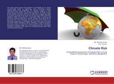 Bookcover of Climate Risk