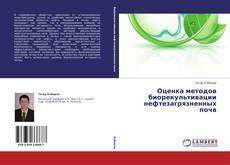 Оценка методов биорекультивации нефтезагрязненных почв kitap kapağı