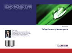 Bookcover of Peltophorum pterocarpum