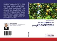 Borítókép a  Интенсификация цитрусоводства в республике Узбекистан - hoz