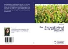 Rice  :     Emerging trends and spatial pattern of rice production的封面
