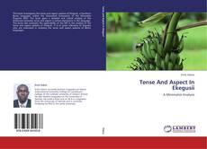 Tense And Aspect In Ekegusii kitap kapağı