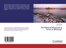 Bookcover of Are Natural Resources a Curse or Blessing?
