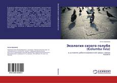 Borítókép a  Экология сизого голубя   (Сolumba livia) - hoz