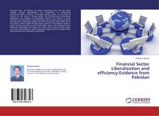 Bookcover of Financial Sector Liberalization and efficiency:Evidence from Pakistan