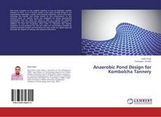 Anaerobic Pond Design for Kombolcha Tannery的封面