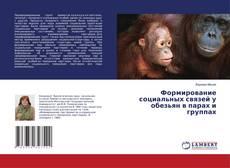 Обложка Формирование социальных связей у обезьян в парах и группах