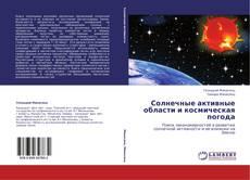 Обложка Солнечные активные области и космическая погода