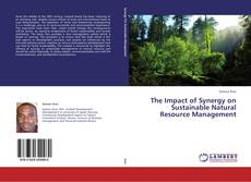Borítókép a  The Impact of Synergy on Sustainable Natural Resource Management - hoz
