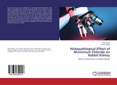 Bookcover of Histopathlogical Effect of Aluminium Chloride on Rabbit Kidney