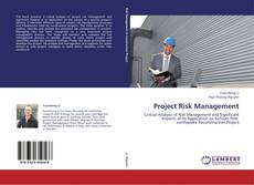 Buchcover von Project Risk Management