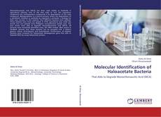 Buchcover von Molecular Identification of Haloacetate Bacteria