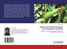 Bookcover of Impact of Climate Change on Production of Maize