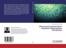 Copertina di Ultrasound Treated Kenaf-Recycled Polypropylene Composites