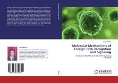 Capa do livro de Molecular Mechanisms of Foreign RNA Recogntion and Signaling