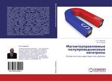 Bookcover of Магнитоуправляемые полупроводниковые негатроны