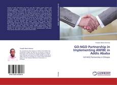 Bookcover of GO-NGO Partnership in Implementing ANFBE in Addis Ababa