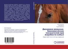 Bookcover of Динамика иммунно-биохимических показателей при жеребости кобыл