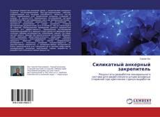 Buchcover von Силикатный анкерный закрепитель