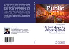 Copertina di An Examination of the Nature and Effects of TRIPs/WTO Agreement